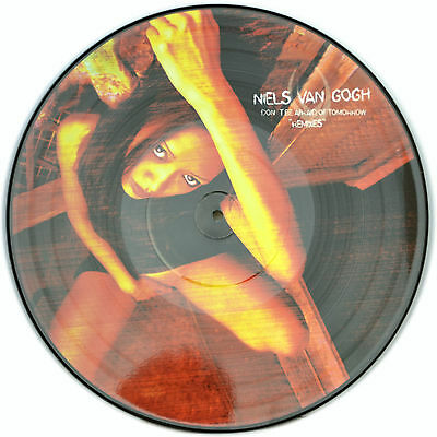 Picture Vinyl Niels van Gogh Don`t Be Afraid Of Tomorro Rare Limited Edition