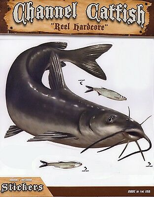 Channel Catfish Decal Sticker Right Facing Gifts Men Fishermen Fish Boats Trucks