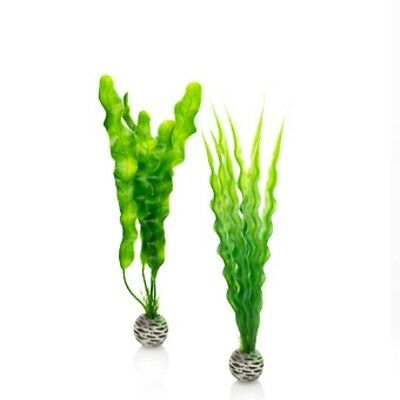 BIORB PLASTIC EASY PLANTS (2 in pack) GREEN MEDIUM SIZE PL02 0822728002162