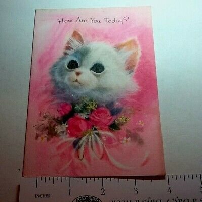 #B663- Vintage Get Well Greeting Card Sweet White Cat In Pink With Roses