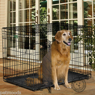 Midwest iCRATE Fold-Carry DOUBLE Door Metal Dog Crate 1542DD 71-90 lb Dog XL-42""