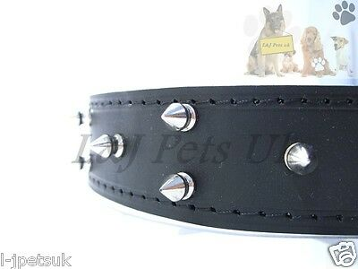 Champion, Leather Spiked Studded Dog Collar ,Pet Collars & Dog Safety Seat Belt