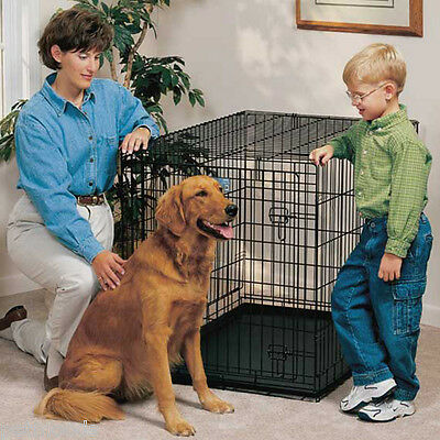 MidWest LIFE STAGES Large SINGLE Door Metal Dog Crate 1642 41-70 lb Dog L-42""