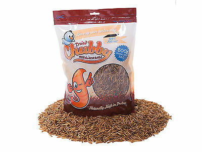 500g High Quality Chubby Dried Mealworms for Wild Birds etc. Best Brand in UK