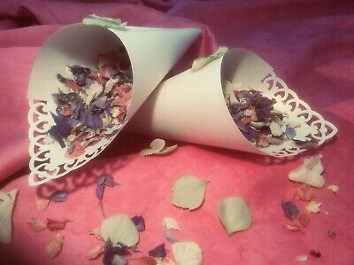 Confetti Cones Pearly Ivory Scrolls- X 50