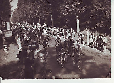 photo presse cyclisme VOORTING CHAPATTE LAZARIDES TOUR DE FRANCE 1950