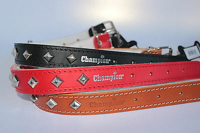 Champion, Strong Real Leather, Studded Dog Collar