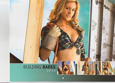 2015 BUILDING BABES WALL CALENDAR GORGEOUS GIRLS WITH TOOLS BRAND NEW