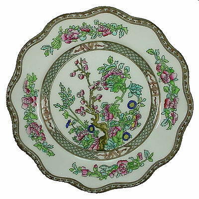 COALPORT china INDIAN TREE-Multicolor Scalloped pattern Luncheon Plate @ 8 7/8""