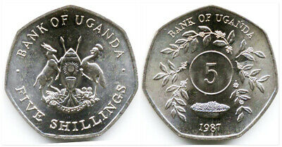 Uganda 1987 5 Shillings Uncirculated (KM29)