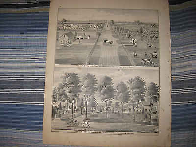 ANTIQUE 1875 TOLEDO WASHINGTON TOWNSHIP LUCAS COUNTY OHIO LITHOGRAPH PRINT NR