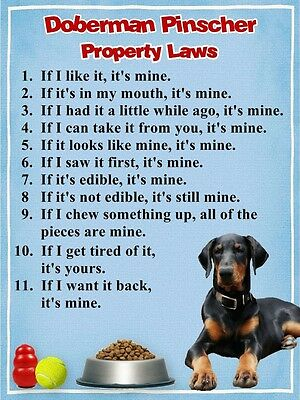 DOBERMAN Property Laws Fridge Magnet PERSONALIZED With Dog's Name