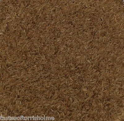 Whole Dried Premium Grade A Caraway Seeds