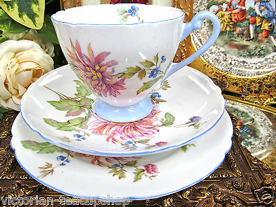 SHELLEY TEA CUP AND SAUCER TRIO FLORAL MUMS PATTERN PAINTED TEACUP