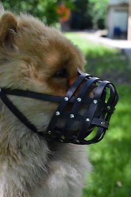 Light Leather dog Muzzle Chow Chow  & Other similar snouts