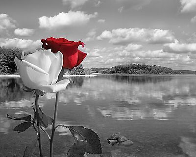 Black White Red Wall Art/Rose Flowers/Lake Landscape/Bedroom Decor Picture