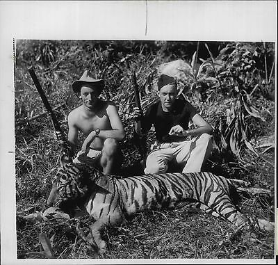 French Soldiers hunt & kill Imperial Tiger Indochina 1951 Press Wire Photo
