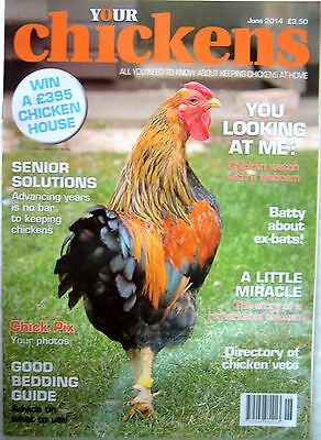 Your Chickens Magazine June 2014 Hens Poultry Keeping Expert advice, news & tips