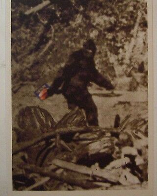 Postcard View of BIG FOOT carring a Can of SPAM  (SPAM MUSEUM) bigfoot  See Pic
