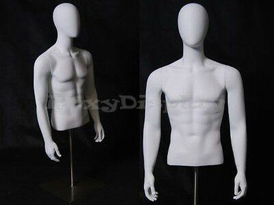 Table Top Egghead Male Mannequin Torso With nice figure and arms #MD-EGTMSA
