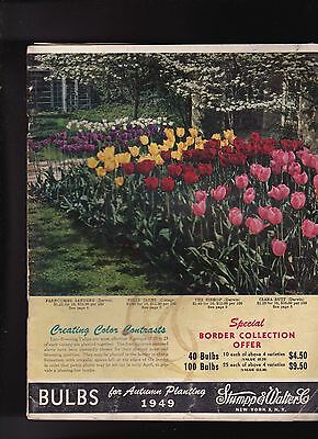 Stumpp & Walter 1949 Bulbs for Autumn Planting Catalog
