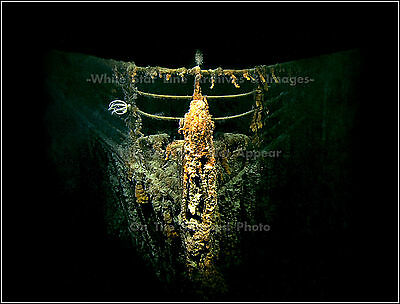 Photo: RMS Titanic Wrecksite: Direct Bow View: Remarkable View