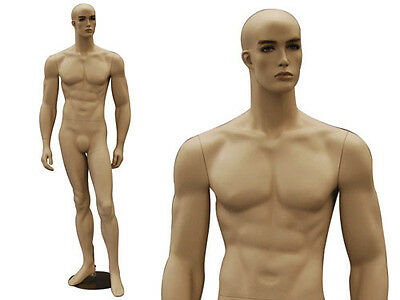 Male Fiberglass Mannequin Manequin Manikin Dress Form Display #CCB32F