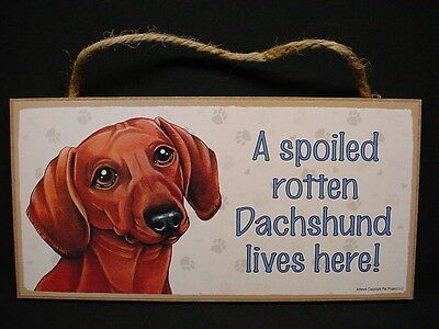 DACHSHUND A Spoiled Rotten RED BROWN DOG wood SIGN hanging wall PLAQUE puppy NEW