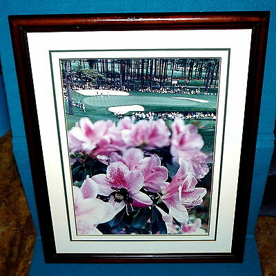 Amazing! AUGUSTA NATIONAL 16th HOLE : Large PHOTO @ Depth of Field AZALEAS & BEE