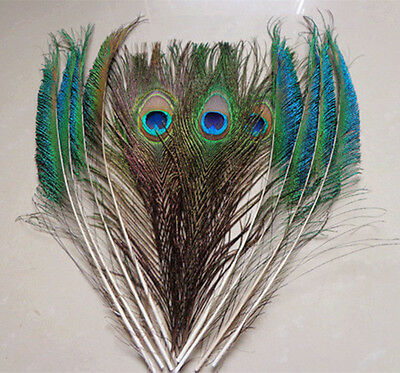 """Wholesale 10/20/50pcs Natural Peacock Eye Tail Sword Feathers 10-12""""Inches"""