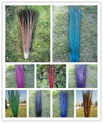 Wholesale natural pheasant tail feather length 16-18 inches  choice of colors