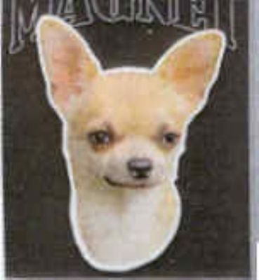 Large Car Magnet CHIHUAHUA discontinued CLEARANCE PRICE