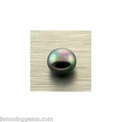 Half-Drilled Black Cultured Fresh Water Button Pearl 10-10.5mm