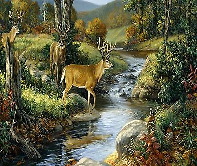 Buck Deer At A Stream   Image Computer Mouse Pad 9 X 7