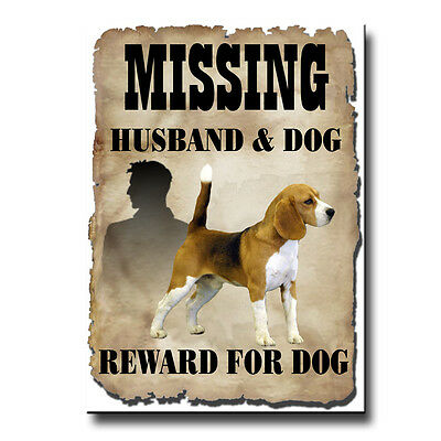 Beagle Husband Missing Reward Fridge Magnet Funny