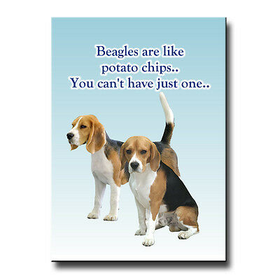 Beagle Can't Have Just One Fridge Magnet Funny