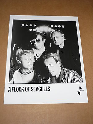 A Flock Of Seagulls 10 x 8 1983 Jive Records Publicity Photo