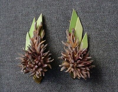 VINTAGE 40'S DEEP LILAC FLOWER GREEN LEAVES CELLULOID EARRINGS SIGNED