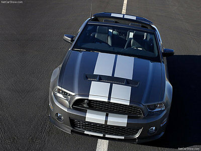 Pair of Racing Rally Stripes w/ Pin Stripe graphics decal Custom Size & Color c