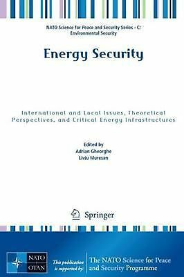 Energy Security: International and Local Issues, Theoretical Perspectives, and C