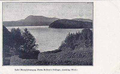 Looking West from Molson Cottage LAKE MEMPHREMAGOG Quebec Canada 1901-7 Postcard