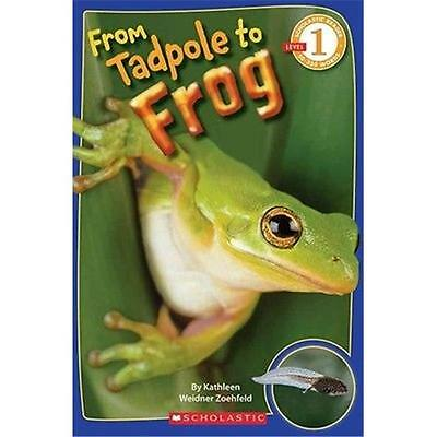 Scholastic Books SCH273374 From Tadpole to Frog