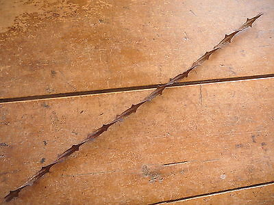 ALLIS WIDE DOUBLE SIDED BUCKTHORN RIBBON -  ANTIQUE BARBED BARB BOBBED WIRE