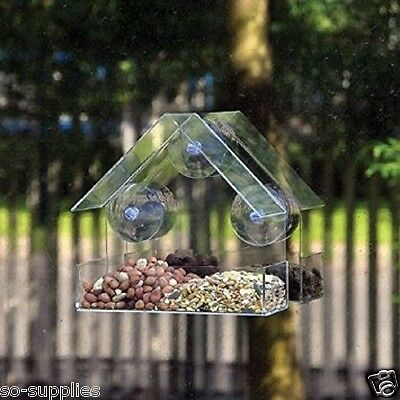 Glass Window Bird Feeder Clear Perspex Viewing Seed Peanut Hanging Suction