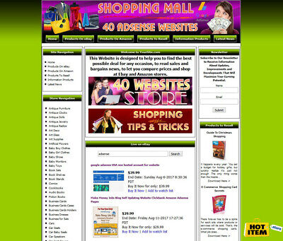 40 Google Adsense Automated Websites Store For Sale