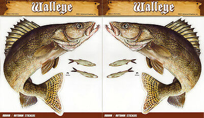 Walleye Large Decal Sticker Right Left Facing Boats Trucks Fishing Fish