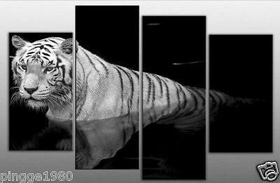 LARGE TIGER CANVAS PICTURE BLACK WHITE oil painting (no framed) P004