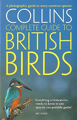 STERRY PAUL BOOK COLLINS COMPLETE GUIDE TO BRITISH BIRDS paperback BARGAIN new