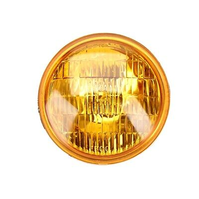 Replacement 6 Volt Vintage Style Fog Light Bulb, Amber Lens