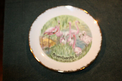Decorative Collector Plate Riverbanks Zoo Columbia, S.C           b